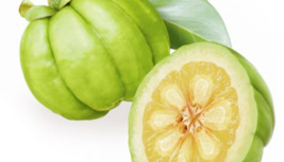 garcinia-fruit