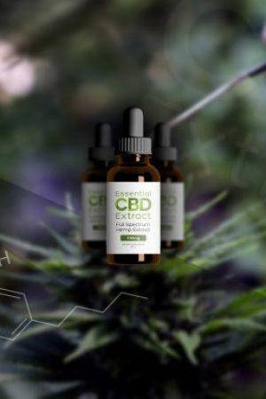 Marijuana to Hemp CBD Boom